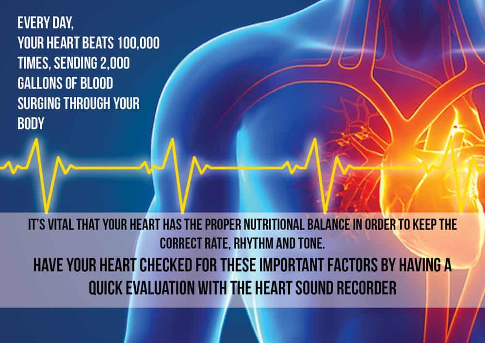 Heart Sound Recorder